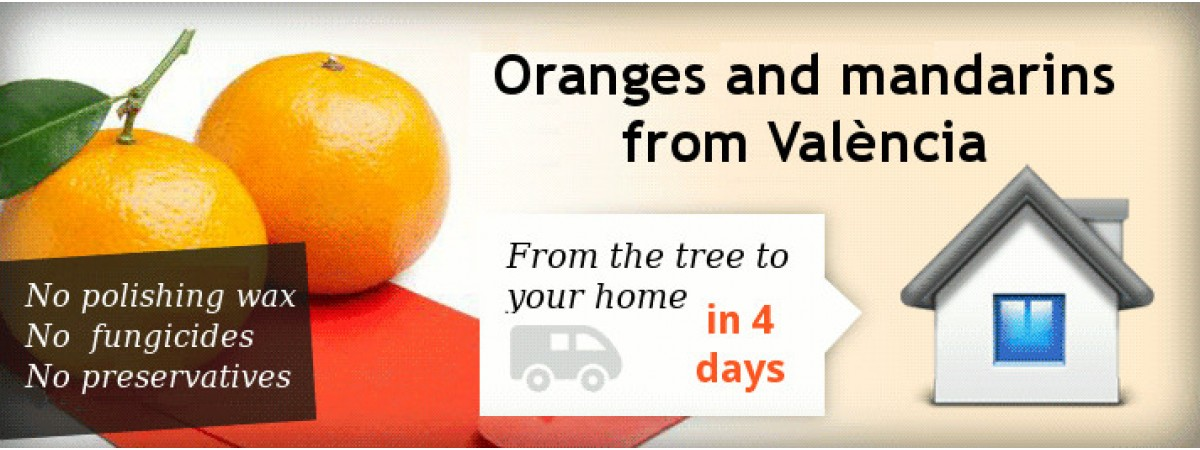Buy fresh oranges home delivery from València